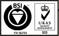 BSI Logo Individual